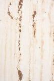 在墙壁上的老水污点-垂直 免版税库存图片