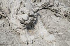 在墙壁上的老虎通过石雕刻 库存图片