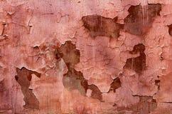在墙壁上的老被风化的剥的红珊瑚油漆 肮脏的被剥皮的膏药墙壁背景纹理  免版税图库摄影