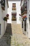 在墙壁上的花在白色镇 库存图片