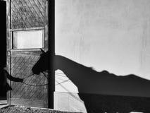 在墙壁上的马阴影 免版税库存图片