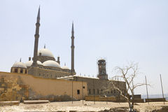 在墙壁和一个老停止的结构树之后的开罗城堡 免版税库存图片