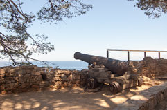在墙壁的大炮 免版税库存照片