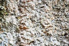 在墙壁的石头 免版税库存图片