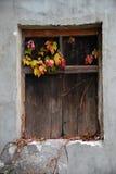 在墙壁的老上的窗口 免版税库存图片