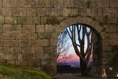 在墙壁的老石曲拱门和在日落的一棵远的树 库存照片