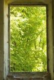 在墙壁的老窗口没有框架有森林看法  库存图片