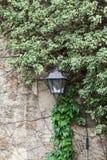 在墙壁的老街灯 图库摄影