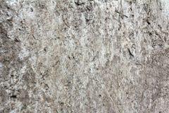 在墙壁的被腐蚀的老灰色混凝土肮脏的纹理的,背景 免版税库存图片