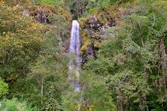 在墨瑞利亚II附近的小瀑布 库存照片