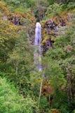 在墨瑞利亚III附近的小瀑布 免版税库存照片