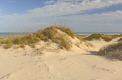 在墨西哥湾海岸的沙丘 免版税库存图片