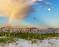 在墨西哥湾海岸的海滩场面 库存照片