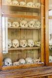 在壁橱的人的头骨在玻璃后 设备在医大中 库存照片