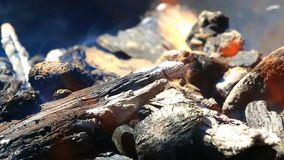 在壁炉的燃烧的木头 股票视频