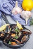 在壳的可口淡菜在柠檬大蒜选矿 库存图片