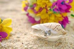 在壳的婚戒在沙子 免版税库存图片