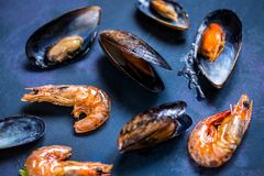 在壳的海鲜在蓝色背景的淡菜和虾 库存照片
