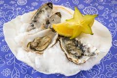 在壳的牡蛎用柠檬 免版税库存照片