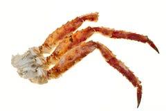 在壳的蟹肉 在白色背景的蟹腿特写镜头 远东螃蟹,纤巧 螃蟹群 图库摄影