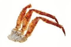 在壳的蟹肉 在白色背景的蟹腿特写镜头 远东螃蟹,纤巧 螃蟹群 免版税库存图片