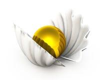 在壳的金黄珍珠 免版税图库摄影