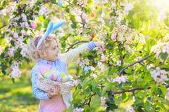 在复活节彩蛋的孩子在开花的庭院里寻找 库存图片