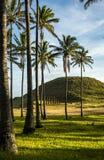 在复活节岛,智利上的Moai 库存图片