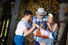 在夏天一起演奏的三个孩子 库存图片