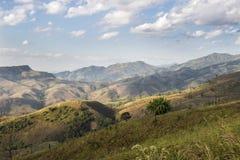 在夏天使与晴朗的天空的高山环境美化 免版税库存照片
