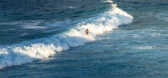 在夏天供以人员在他的冲浪板的冲浪者骑马在波浪 库存图片
