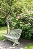在夏天公园垂直的孤立长凳 免版税库存图片