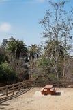在夏天公园的野餐桌 库存照片