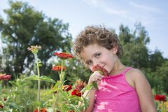 在夏天在庭院,一个小滑稽的卷曲女孩嗅a 免版税库存照片