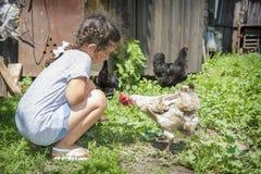 在夏天在村庄一个小女孩哺养鸡机智 免版税库存图片