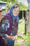 在夏天在村庄有一个祖母在围场 免版税图库摄影