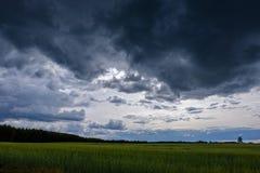 在夏天对比雨在绿色草甸的暴风云和有些树 在雨前的蓝天 免版税库存图片