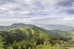 在夏天山的美好的风景 免版税库存照片
