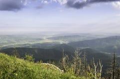 在夏天山的美好的风景 免版税库存图片