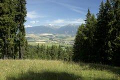 在夏天斯洛伐克山高Tatras的看法 库存照片