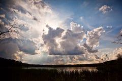 在夏天日落森林地的湖 免版税图库摄影