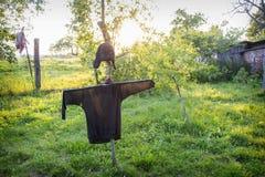 在夏天有一个稻草人在庭院里 库存图片