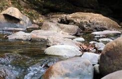 在夏天期间,一点瀑布在密林的河在哥斯达黎加 库存照片