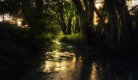 在夏天期间,飘渺小河 免版税库存照片