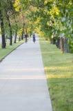 在夏天期间,与骑自行车者的成拱形的绿色树 免版税库存图片