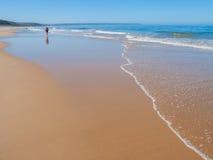 在夏天期间,在肋前缘da Caparica海岸的丰泰da Telha海滩 免版税库存照片