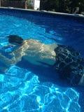 在夏天期间,游泳在水池 免版税库存图片