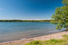 在夏天期间, Hvittrask湖,在赫尔辛基附近, 库存照片