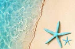 在夏天海滩的海星 夏天背景 热带海滩的沙子 图库摄影