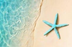 在夏天海滩的海星 夏天背景 热带海滩的沙子 库存照片